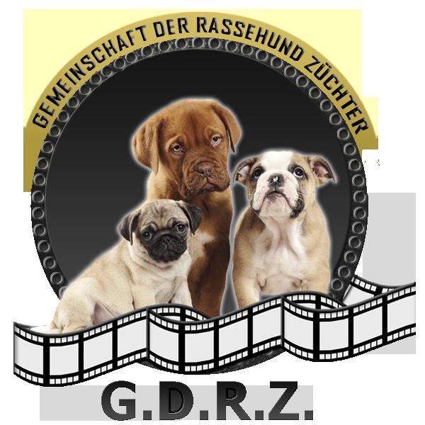 G.D.R.Z. Gemeinschaft der Rassehunde
